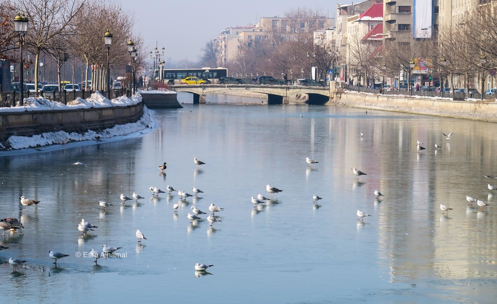 Photo of the river in Bucharest