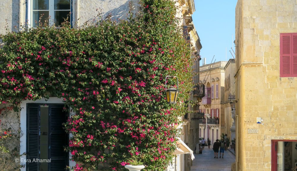 Photo from the Mdina