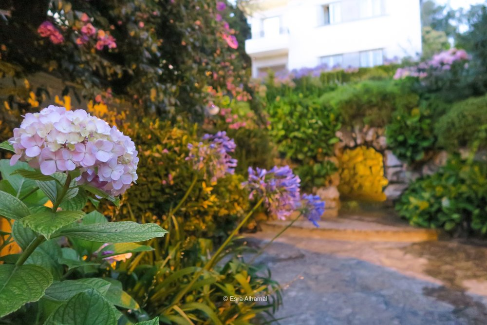 Sintra Guesthouse