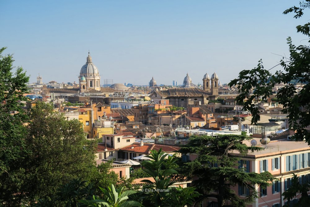 The view of Rome