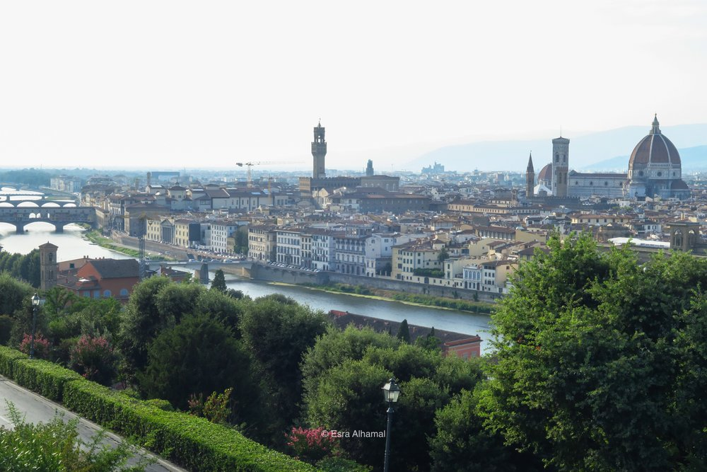 The view from Plaza Michelangelo