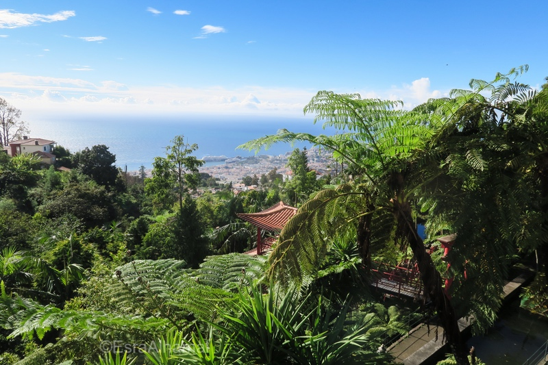 View of Funchal from Monte