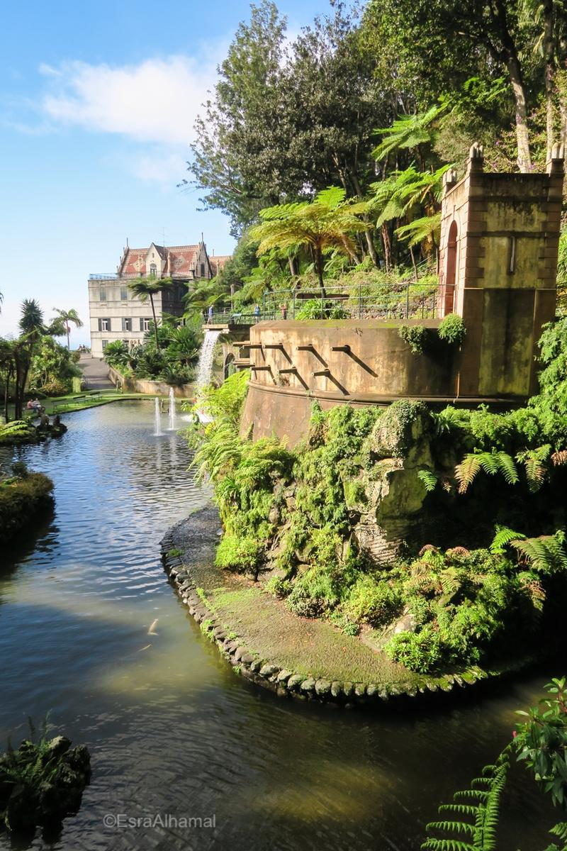 Lake inside the tropical garden of Madeira