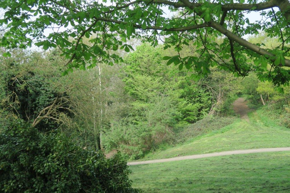 Charlton Park - Greenwich