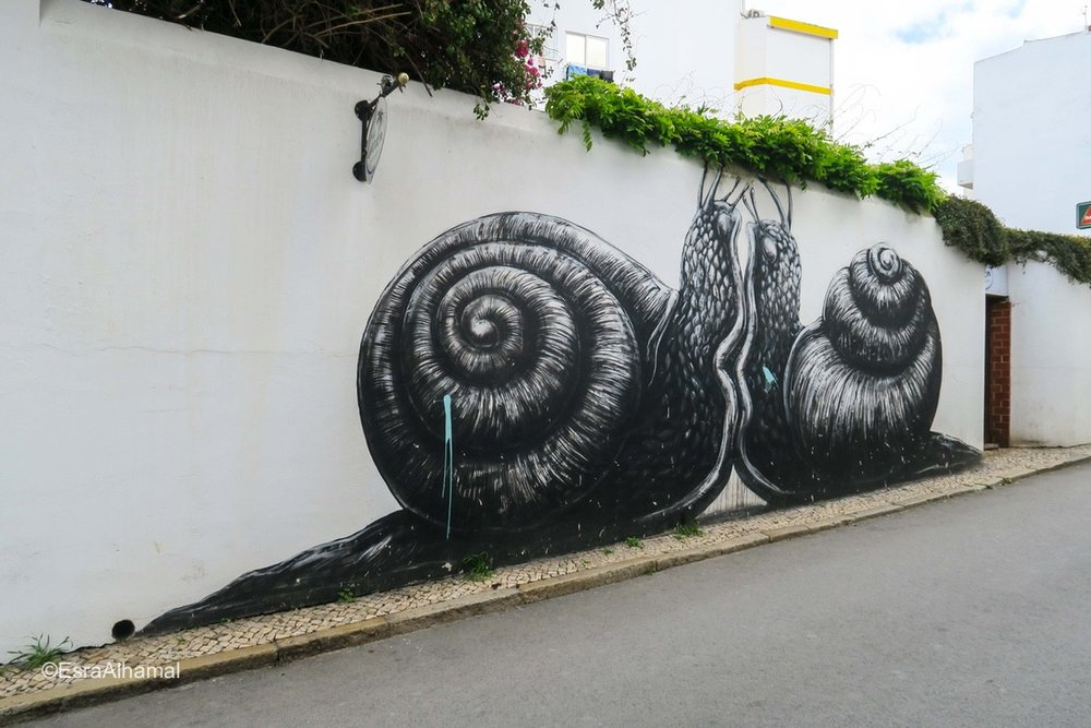 black and white snails - Graffiti in windows Lagos, Portugal