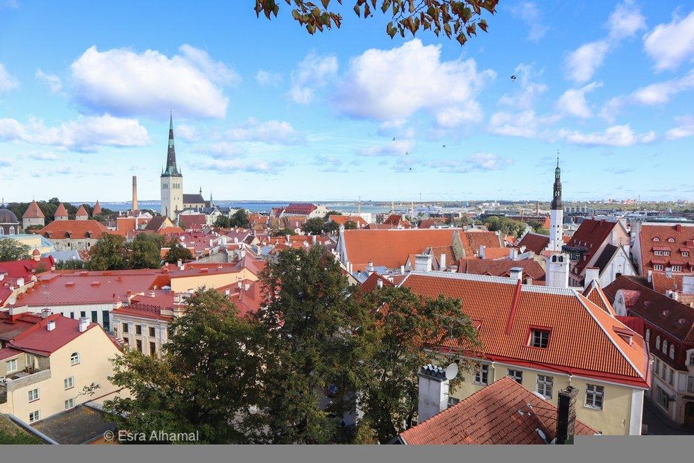 Cityscape to Tallinn, Estonia