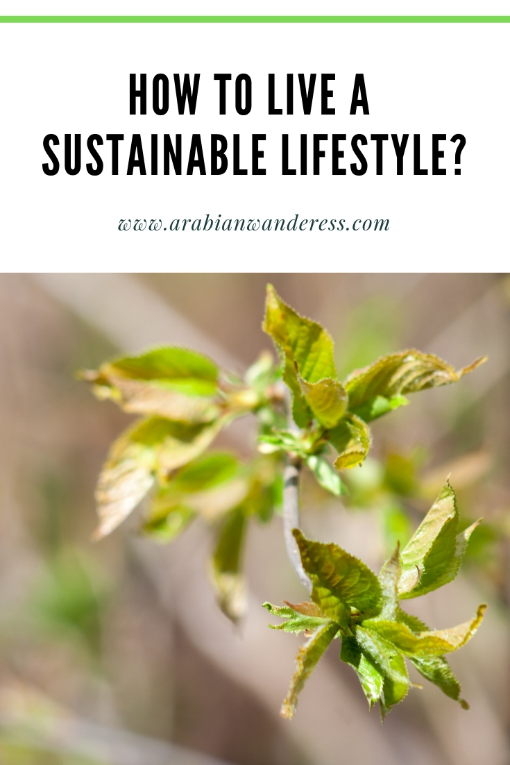 How to live a Sustainable lifestyle?