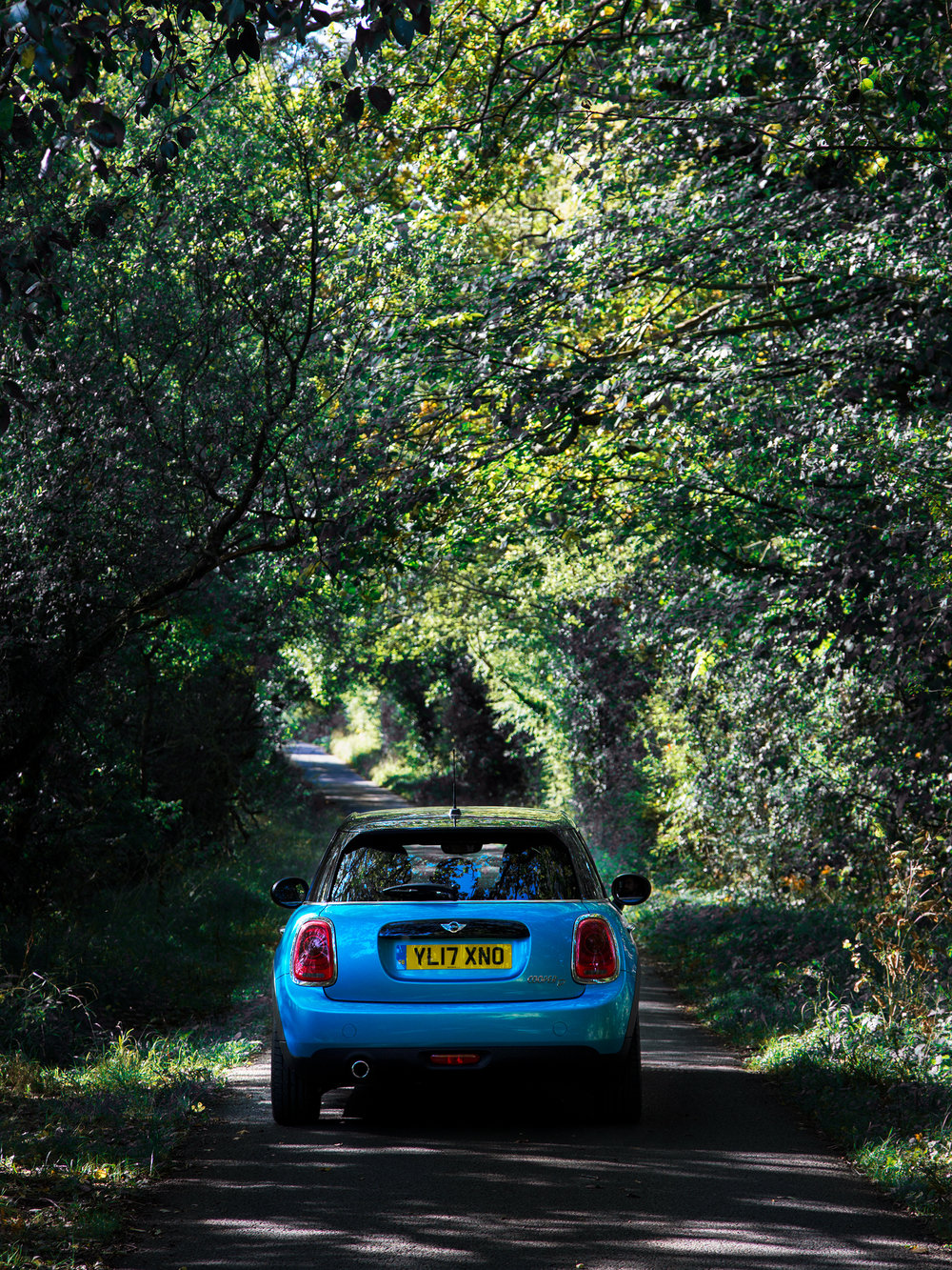 MINI Cooper D in the Country