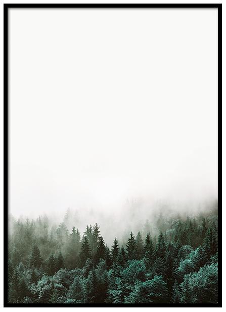 Desenio Forest Poster £Various