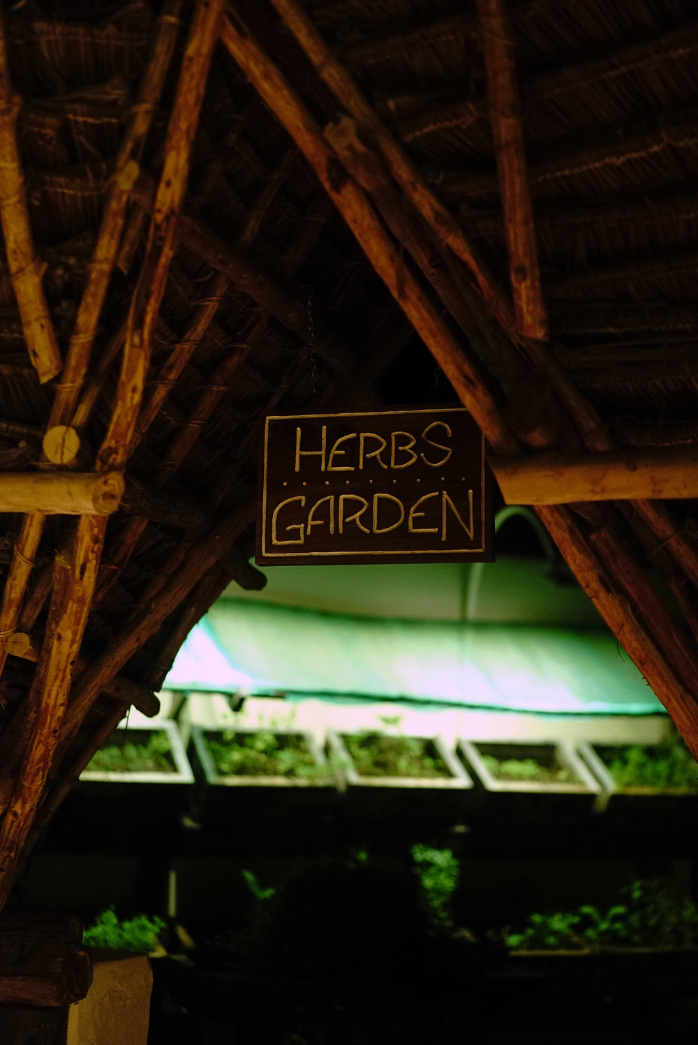 Essque Zalu Zanzibar Herb Garden.jpg