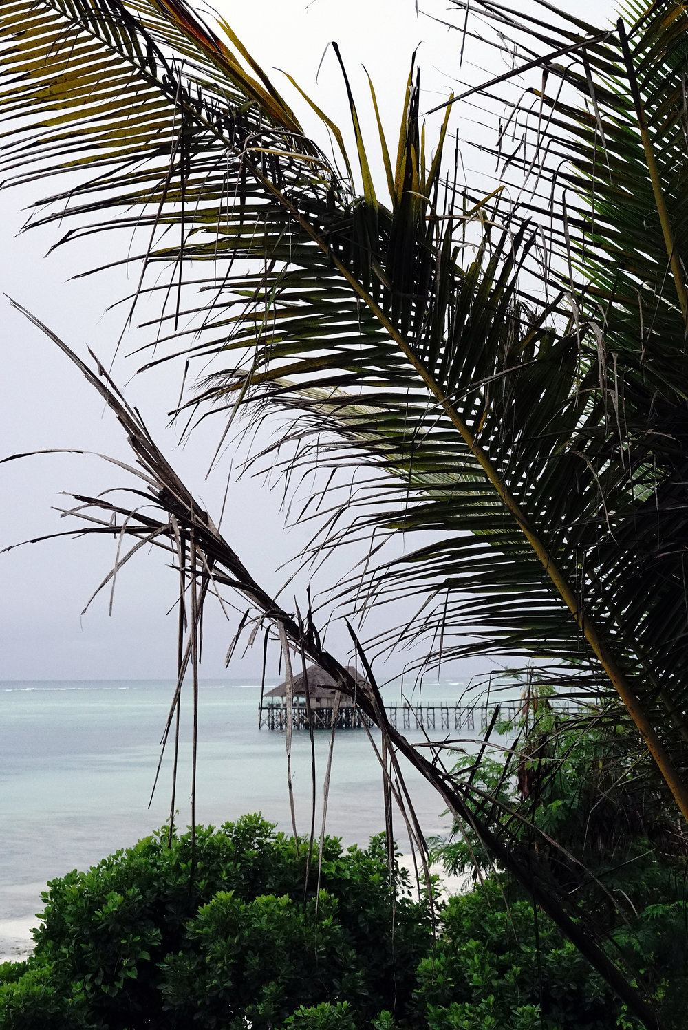View of Jetty from Balcony.jpg