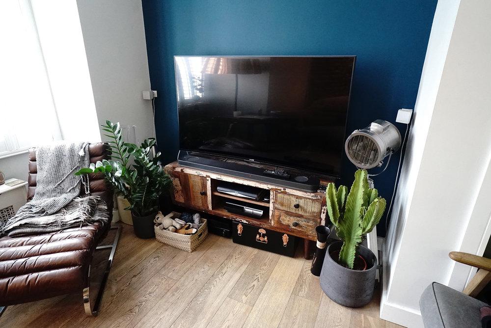 Indoor Plants L.jpg