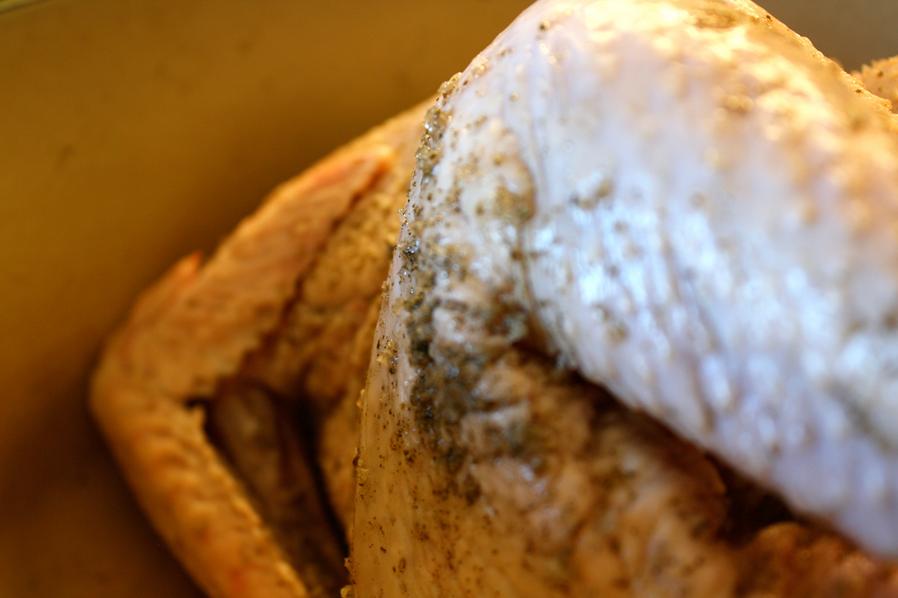 Chicken_1.png