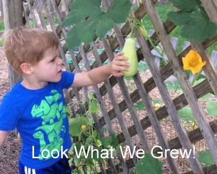 Look What We Grew.JPG
