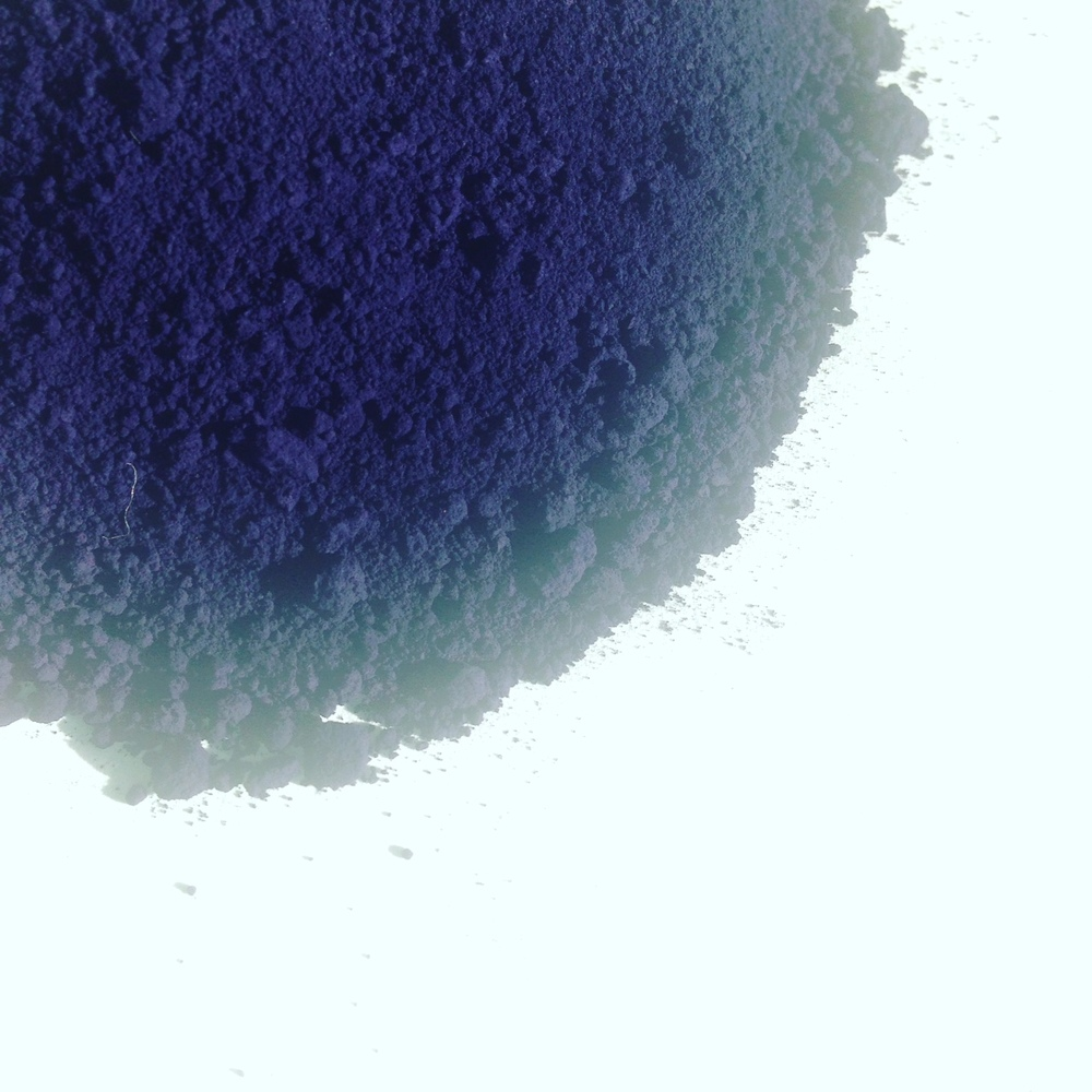 powdered indigo.JPG