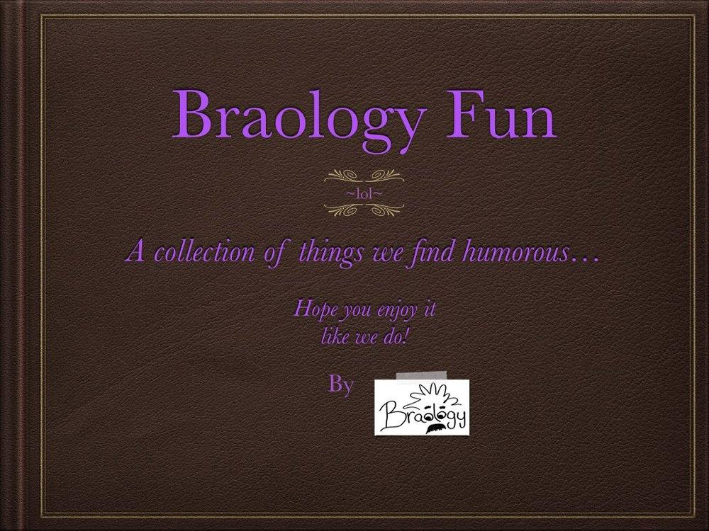 braology fun album.001.jpg