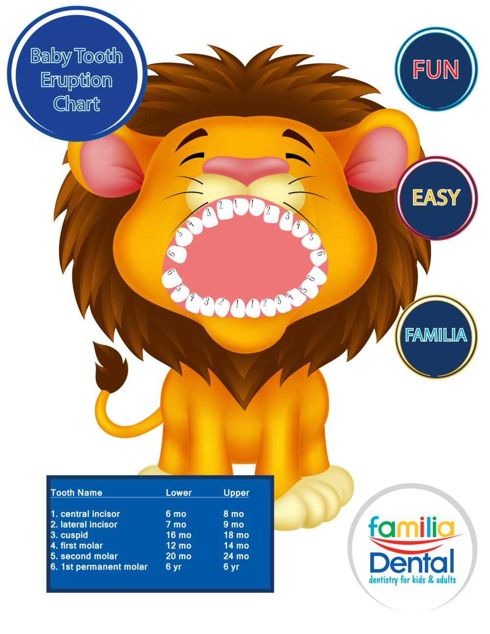 Baby Teeth Eruption Chart Familia Dental – Baby Teeth Chart