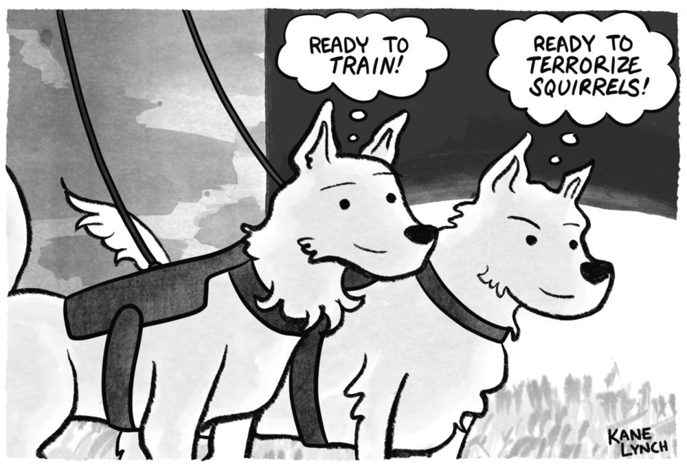 huskies.png