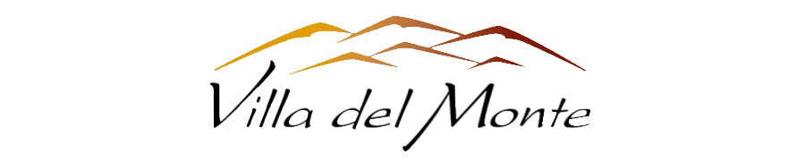 VDM_logo_transparent.png