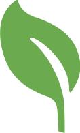 renew leaf.jpg