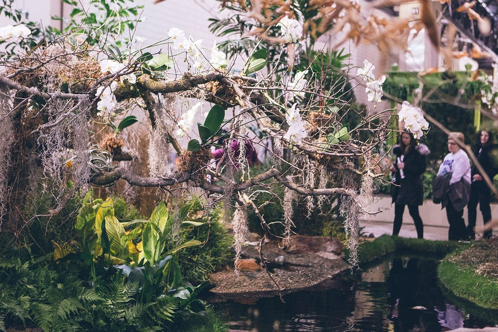 Joe_Mac_Creative_Anthropologie_spring_fashion_show_Philladelphia__0061.jpg