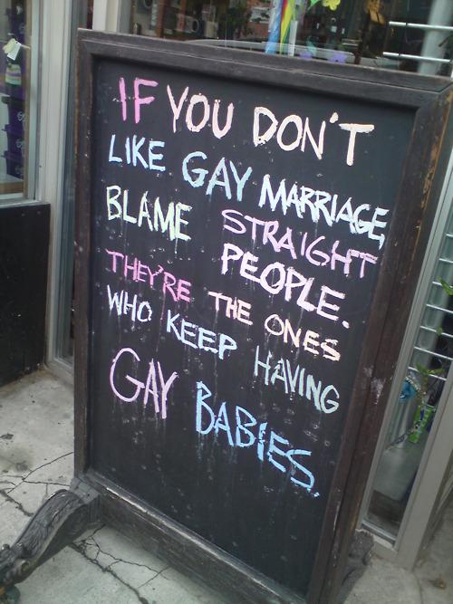 sirmitchell :     gaybies.