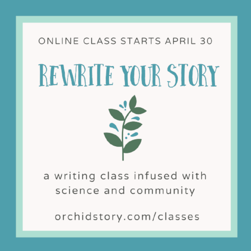 version 2 Rewrite Your Story Apr 30 Promo Online Class.png