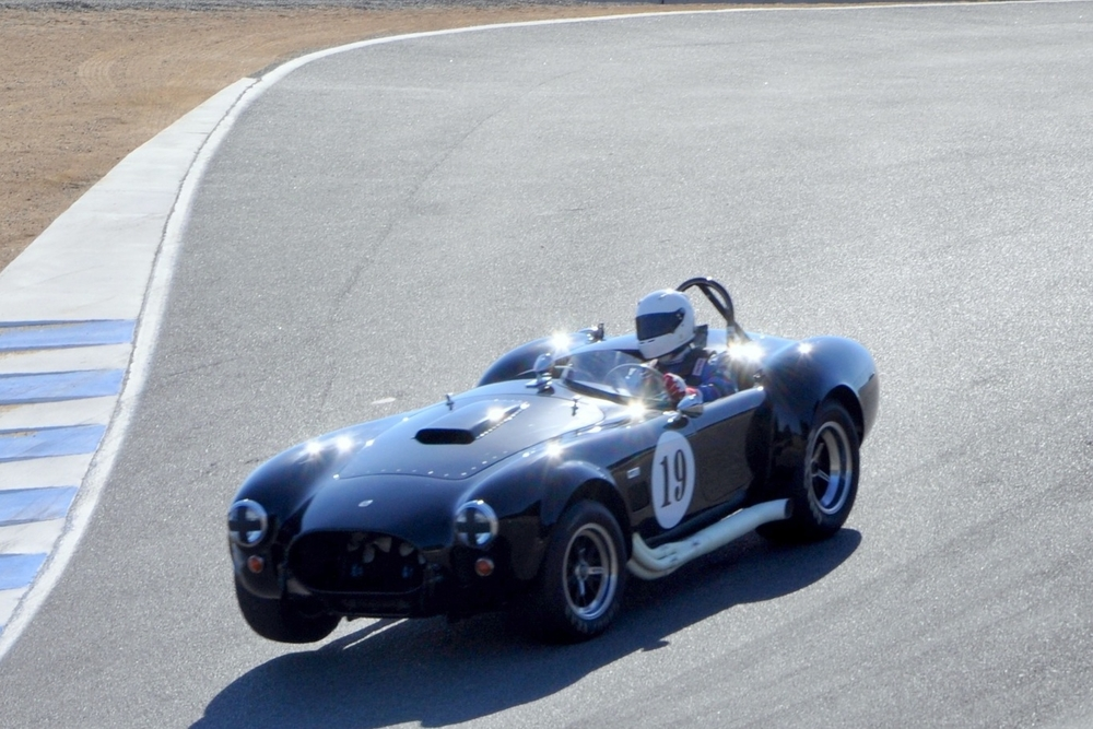 COBRA PIC FOR RACE ENTRY.jpg
