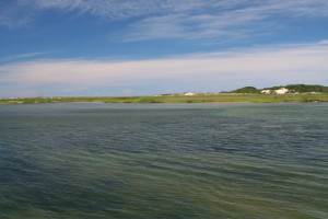 Ptown_20070809 _03