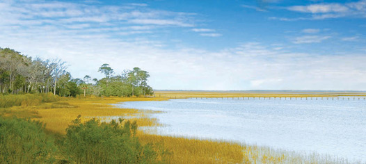 Islands of Beaufort  |  Beaufort, South Carolina