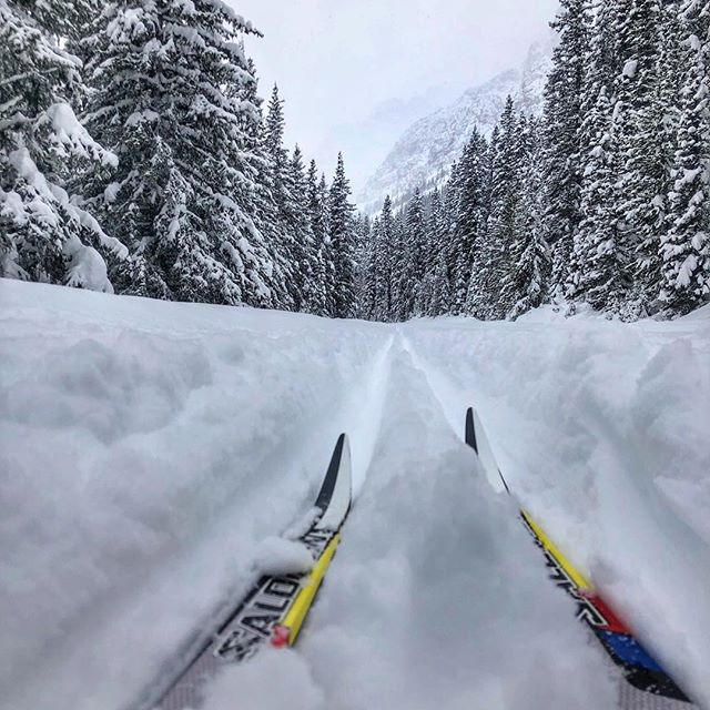 The snow didn't stop us today skiing up to Moraine Lake for the @albertaslalom annual ski camp. Such a beautiful day! @mholroyd @razeghianroxana @nathannoack35 @calebnoack1 @ @vertical_bowz @cminty_13 #mecambassador #GoodTimesOutside . . . #skicamp #crosstraining #morainelake #crosscountryskiing #lakelouise #snowday #travelalberta
