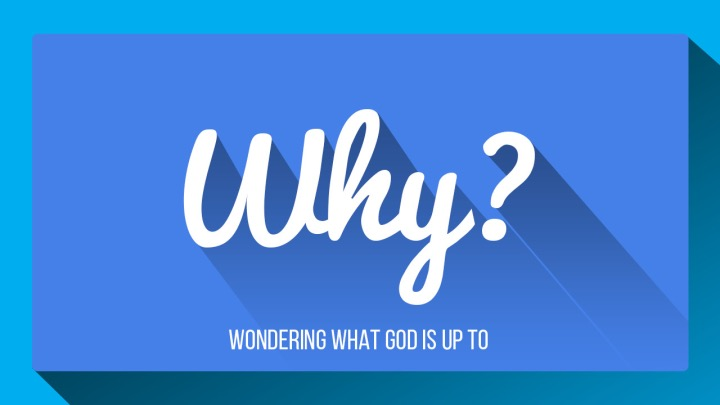 Why? • Oct. 18 - Nov. 8, 2015