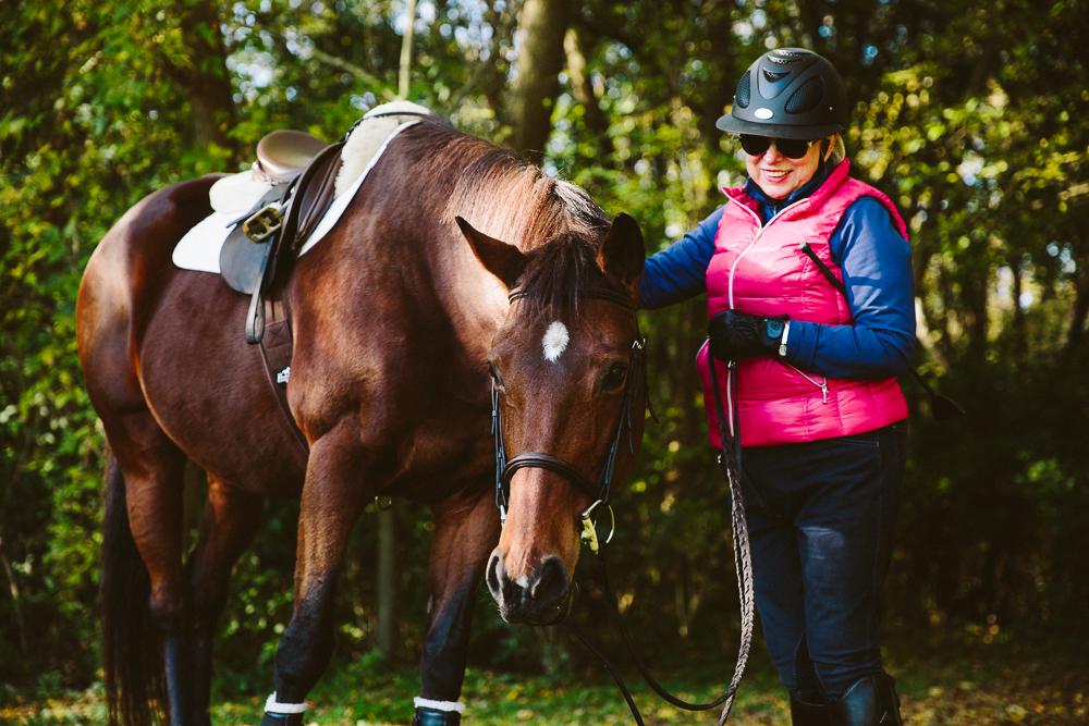 equestrianhorseportrait