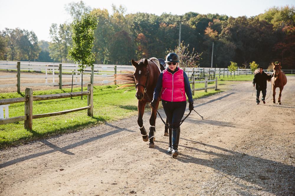 equestrianhorserider
