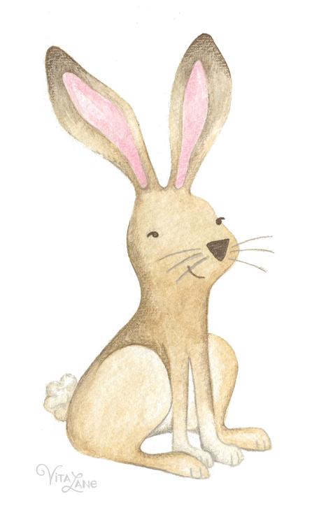 bunny_rabbit_sweet_cute.jpg