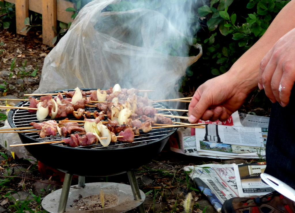 Portable grill and kebabs