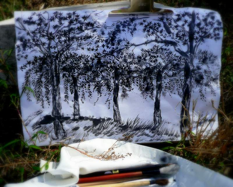 brush painting hua hua