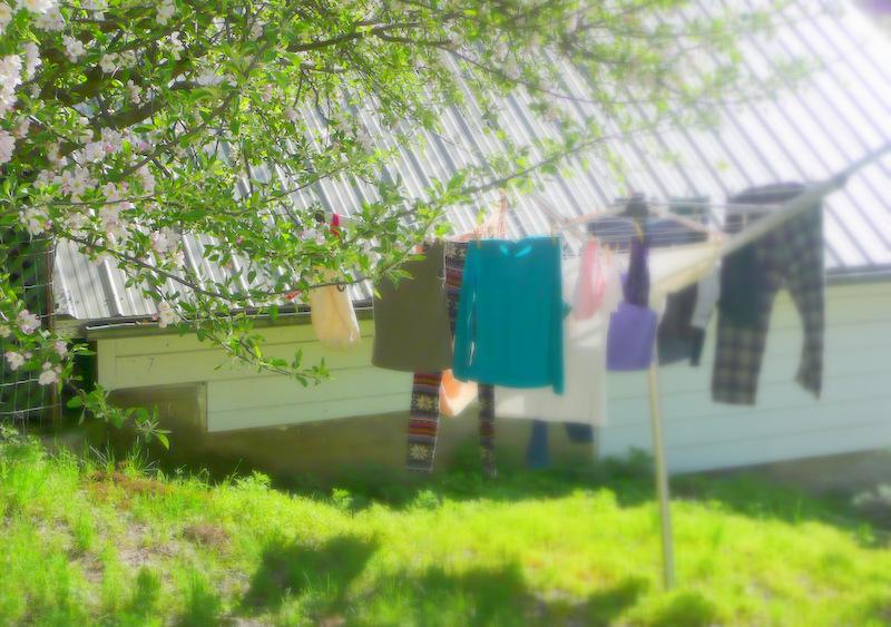 umbrella solar clothes dryer