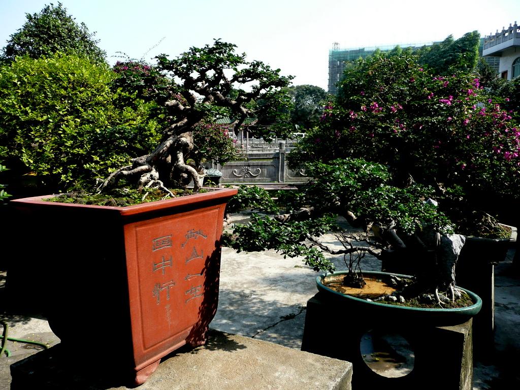 Qing Wan Garden