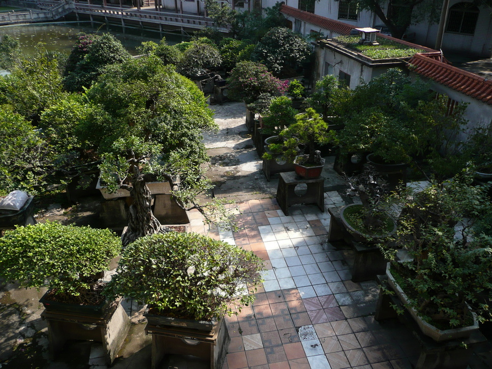 view of garden from above