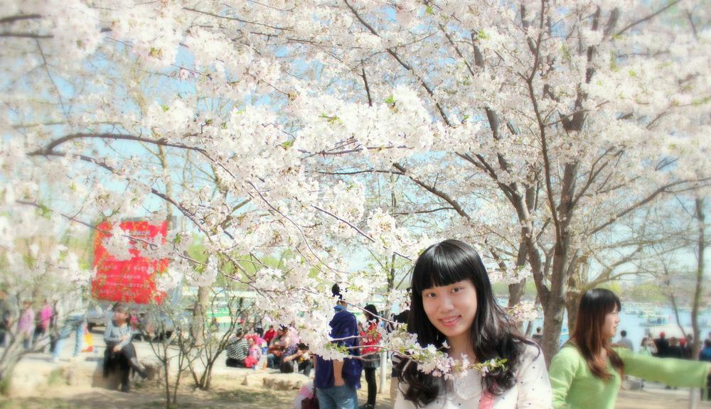 Eunice cherry blossom