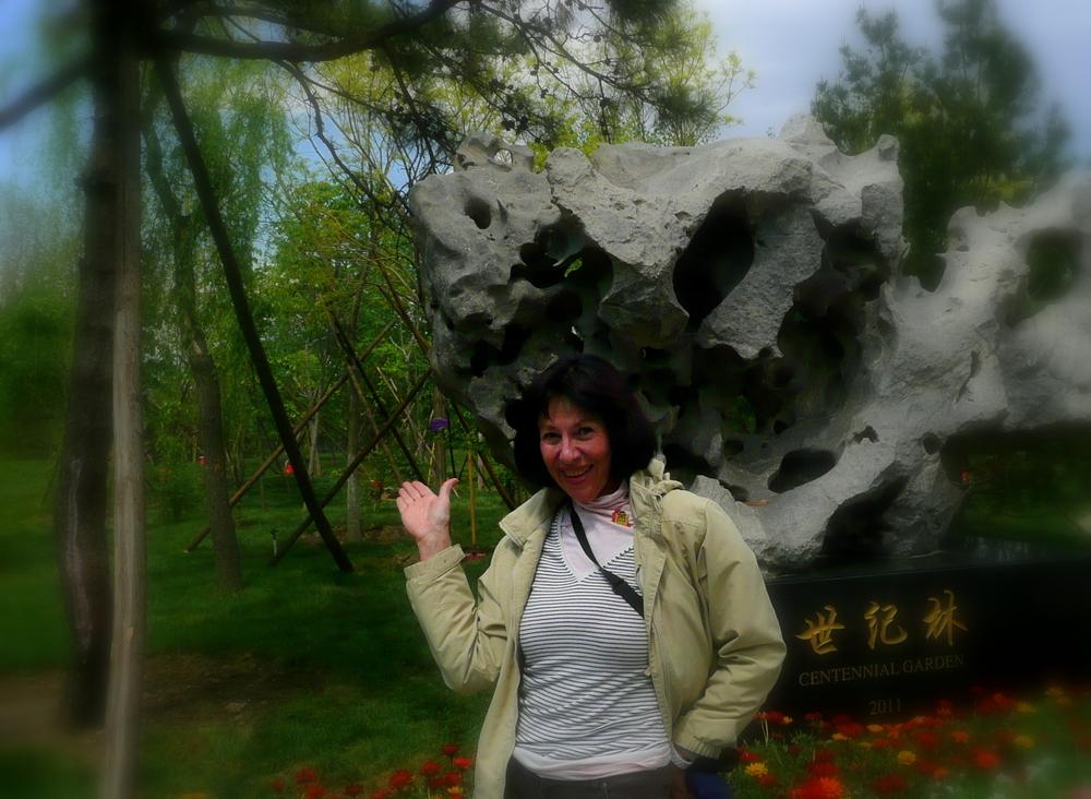 Rock Tree & Me