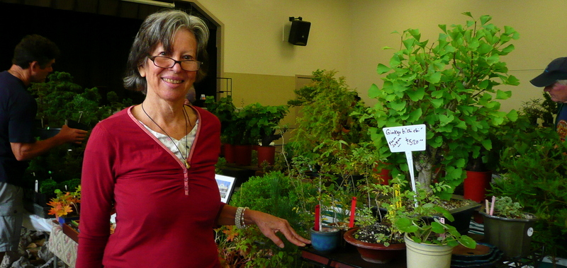 August 2014 at Redwood Empire Bonsai Society show in Santa Rosa, vendors sales