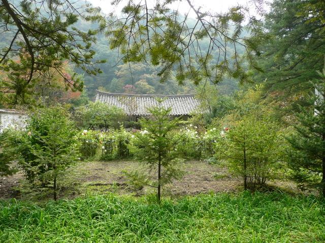 Bohyon Temple
