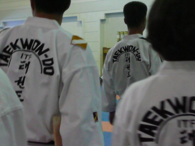 Inspection of Taekwondo training of the Korean trainers and world famous Taekwondo Demonstration