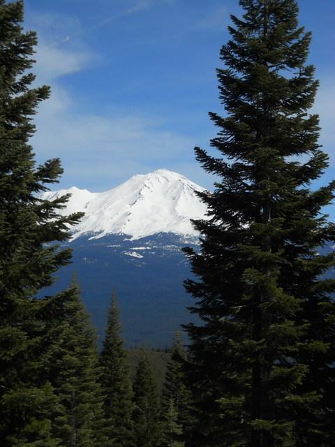 View north to Mt Shasta.