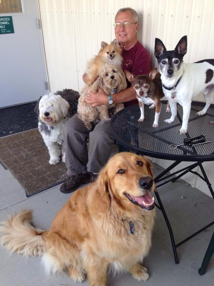"Jay and his pals on ""bring your dogs to work day"" at The Science and Conservation Center"