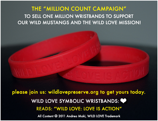 wildlove_wristbands_update2.jpg