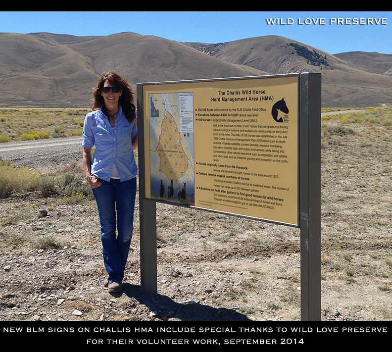 Wild Love Preserve Founder, Andrea Maki, with new Idaho BLM sign, Challis Herd Management Area, June 2014.