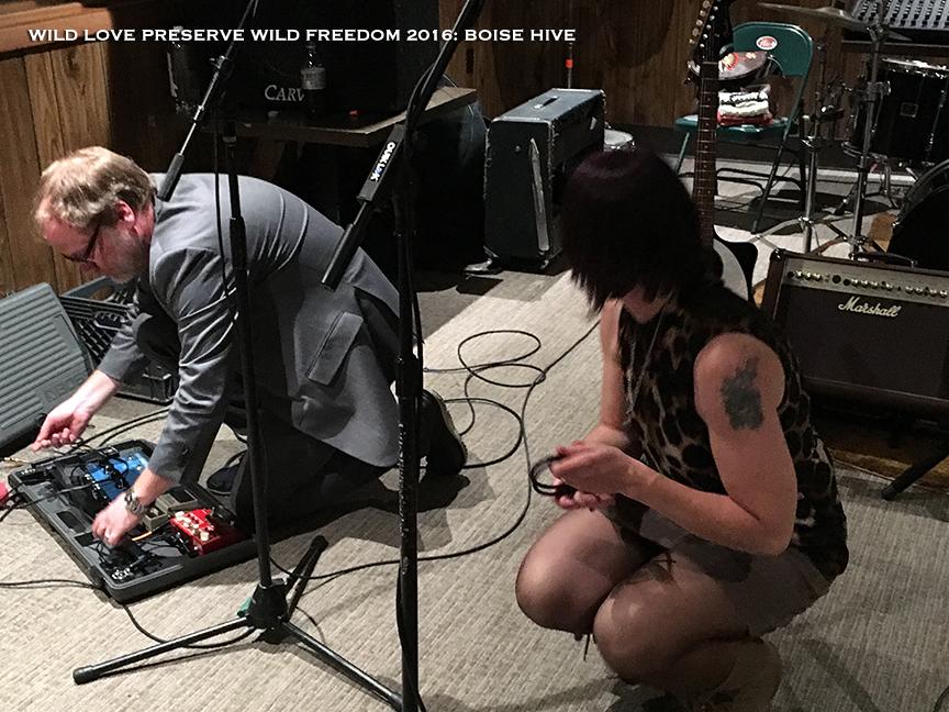 WildFreedom-BoiseHive15.jpg